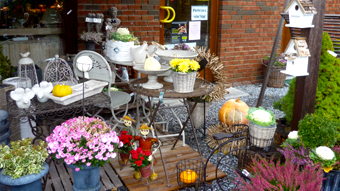 Découvrez notre magasin à Han-sur-Lesse